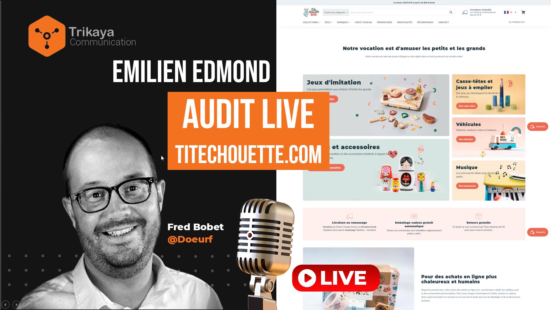 Trikaya : audit seo titechouette